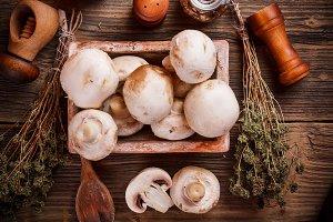 White champignon