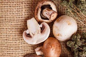Raw champignon