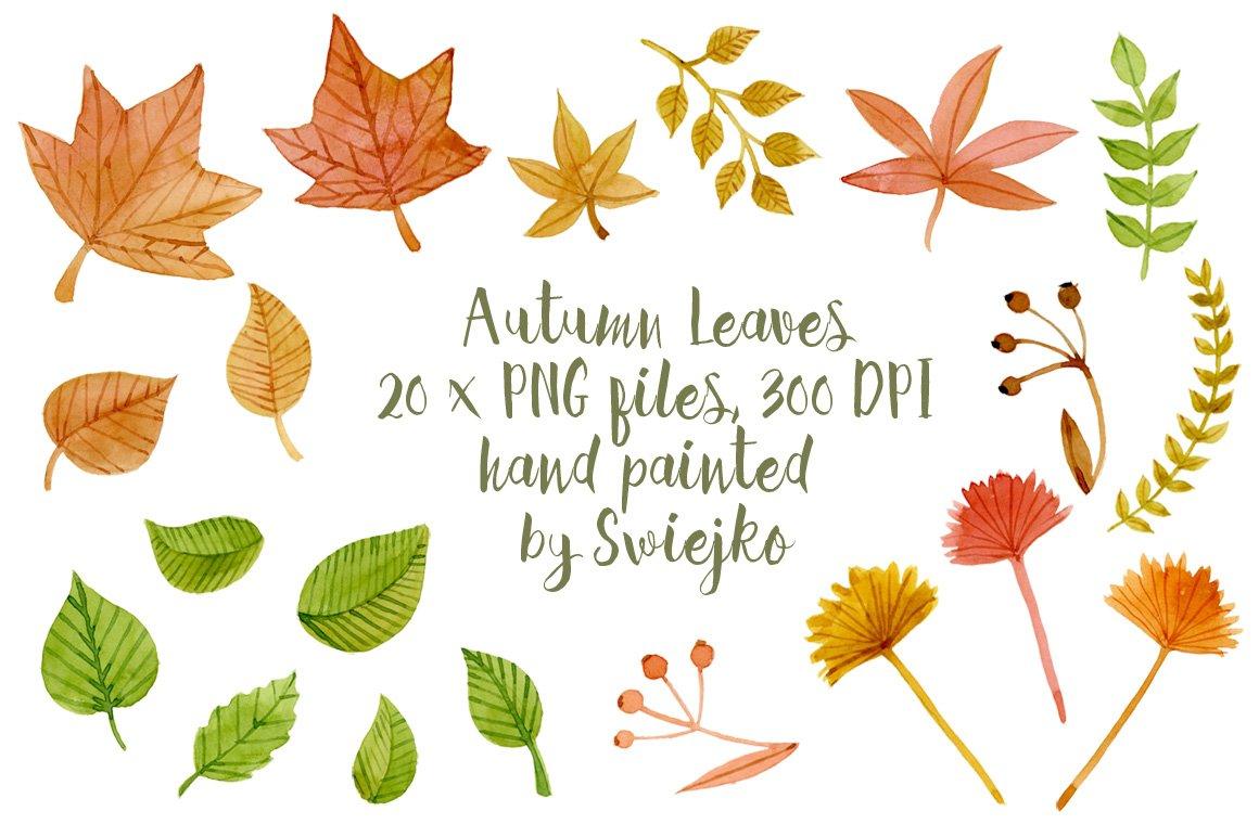 Leaf Clipart, Download Free Transparent PNG Format Clipart Images on Pngtree