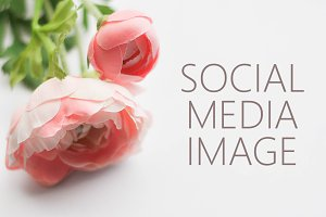 Styled Stock Photography / Flowers