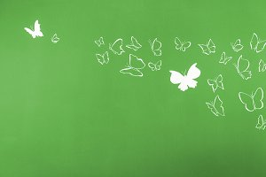 Butterflies flying green background
