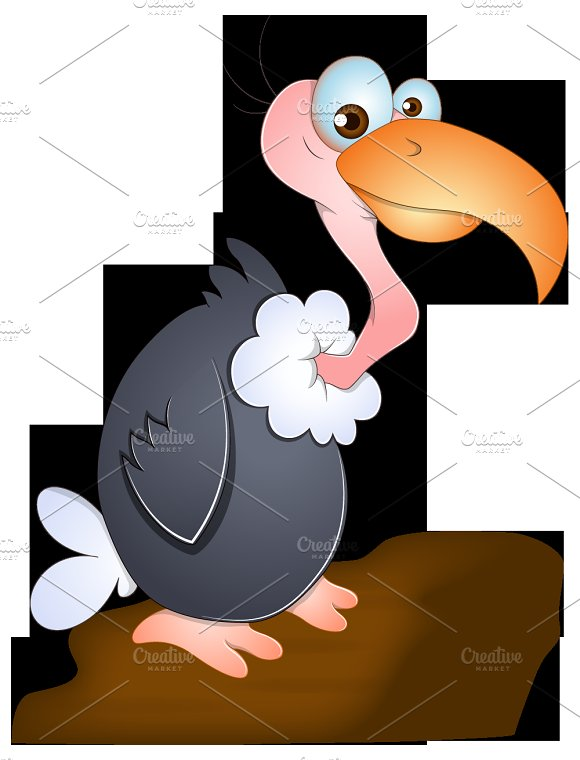 Birds Vectors in Illustrations - product preview 3