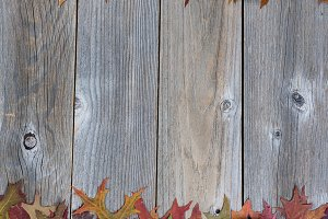 Autumn Decoration Borders on wood