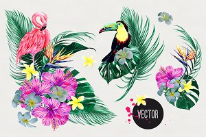 Tropical jungle vector illustrations