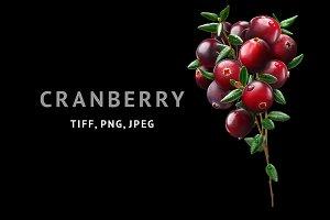 Cranberry bouquet