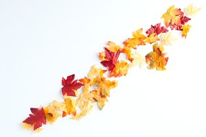 Fall Leaves Styled Stock Image