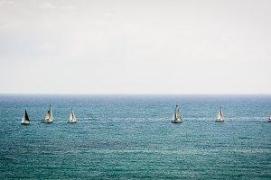 Sailing in good company