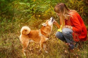 Girl scratching Shiba Inu dog
