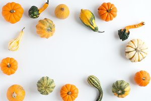 Gourds & Pumpkins Fall Stock Image