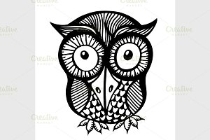 Hand drawn owl illustration.