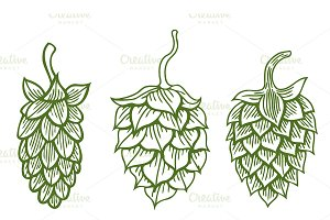 Set of Hops vector icon or logo