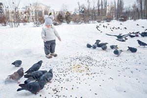 Little girl feeds pigeons in winter.