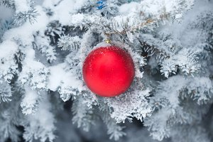 Red ball Christmas ornament.