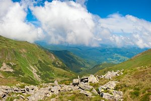 Summer Carpathian mountain, Ukraine