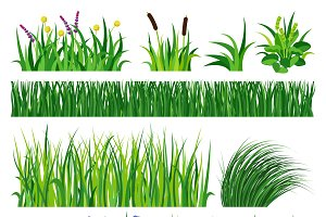 Green grass showing roots vector
