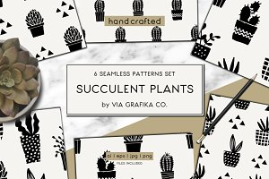Succulent Plants Pattern Set
