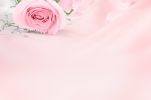 Soft rose pink background