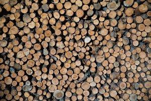 pile of cut wood