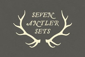 6 Deer Antlers - Hand Illustrated