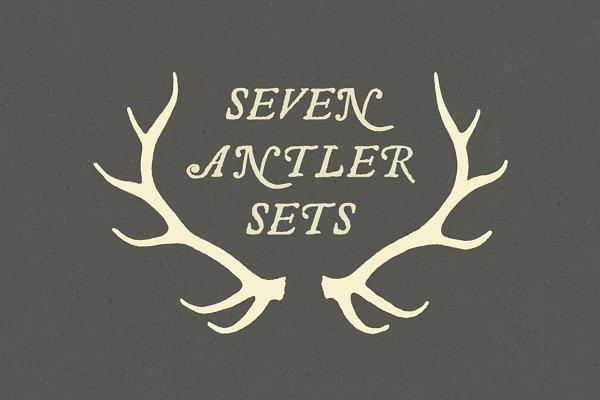 6 Deer Antlers - Hand Illustrated