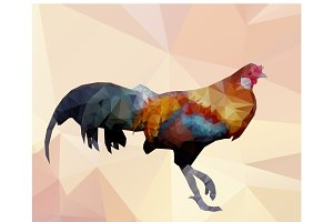 Colorful cock-polygon vector