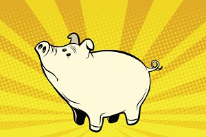 Funny cute pig pop art illustration