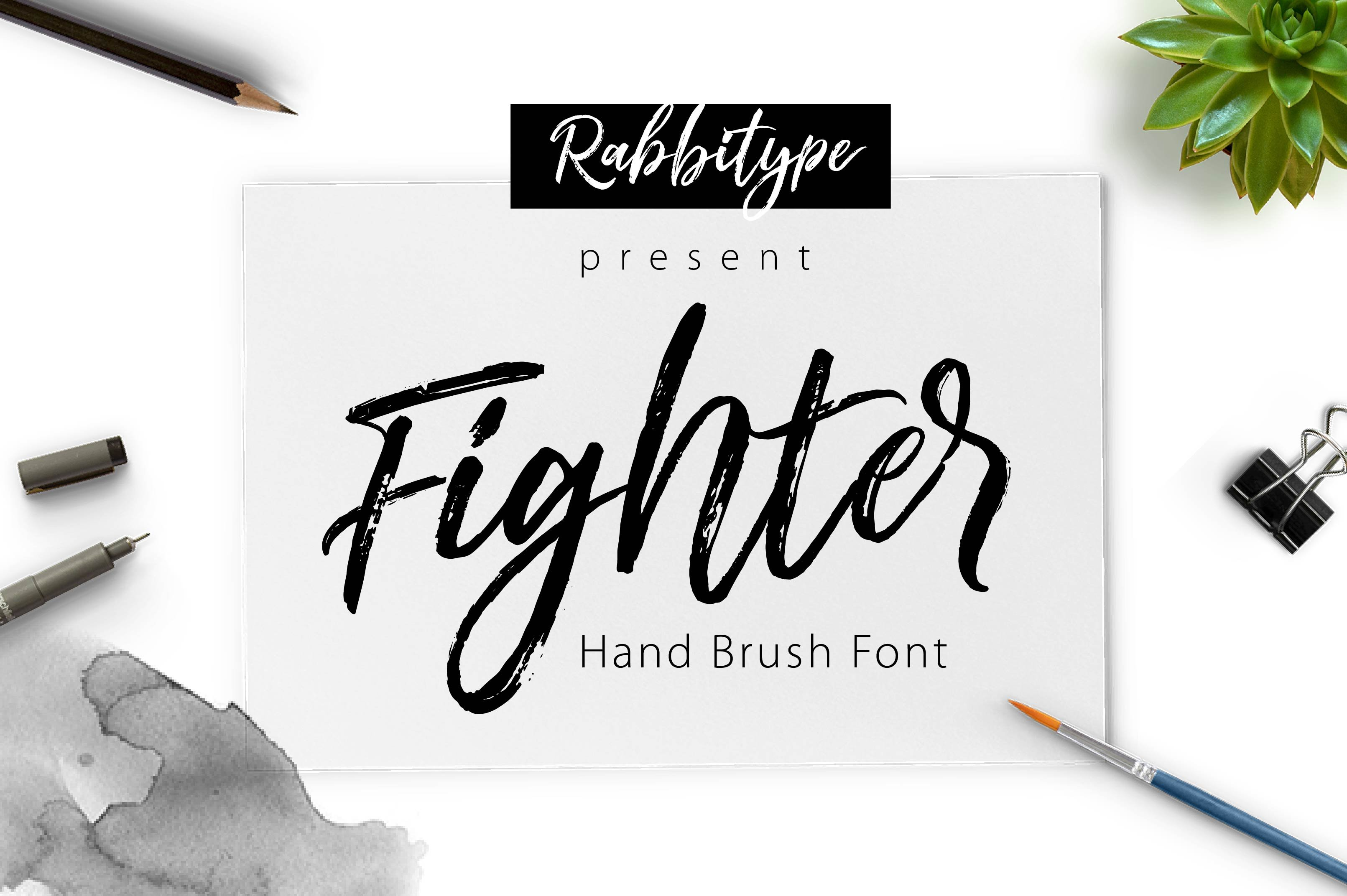 Fighter Brush Script Fonts Creative Market