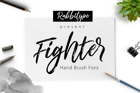 Fighter brush script fonts on creative market