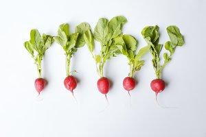 Five radishes