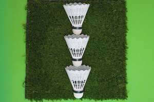 birdies for badminton
