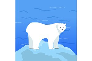 Polar Bear Ursus