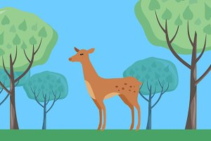 Fallow-deer in Habitat