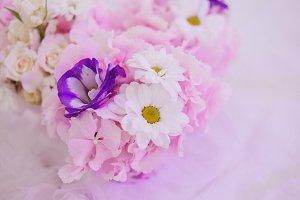 Blush flowers I Styled Stock
