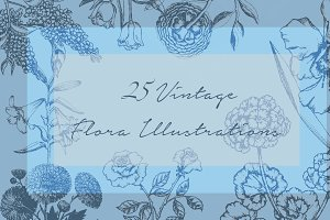 25 Vintage Flora Illustrations