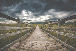 Pathway Nature