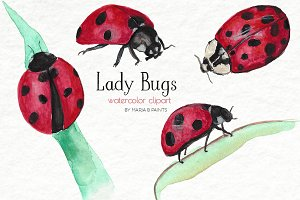 Watercolor Clip Art - Lady Bugs