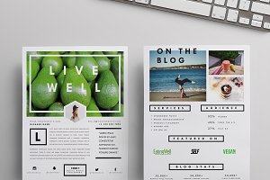 Blog Media Kit Template | Two Pages