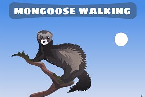 Mongoose walking through Wild West