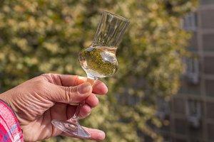 Glass of plum brandy