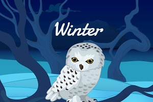 White owl and winter landscape