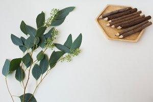Eucalptus Flatlay