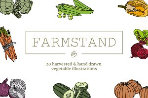 20 Handdrawn Vegetable Illustrations