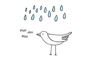 Bird singing in the rain