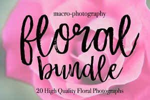 20 Stock Floral Macro-Photographs
