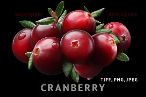 Cranberry composition