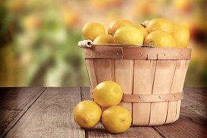 Instagram Lemon Basket