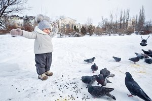 Little girl and pigeons in winter.