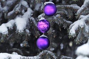 Purple balls Christmas decorations