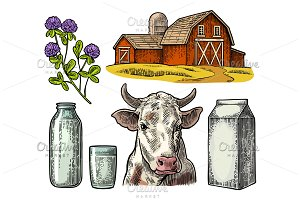 Set Milk farm. Cow clover bottle