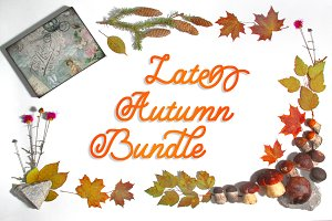 Late autumn bundle